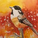 aquarellen-vogels-010